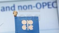 OPEC nhất trí kéo dài thỏa thuận cắt giảm sản lượng dầu