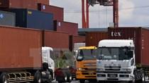 PMI dịch vụ của Nhật Bản chậm lại trong tháng 11