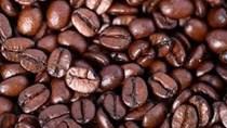 Giá cà phê kỳ hạn tại NYBOT sáng ngày 28/12/2017