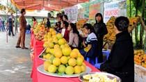 Mãn nhãn với Lễ hội cam Cao Phong