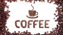 Giá cà phê trong nước bất ngờ đảo chiều giảm 700 nghìn đồng/tấn