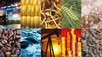 Giá lương thực toàn cầu trong tháng 8 đạt mức cao nhất 15 tháng