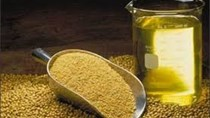 USDA: Dự báo cung cầu dầu đậu tương  thế giới  niên vụ 2016/17