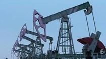TT dầu TG ngày 5/11/2018: Giá dầu giảm do Mỹ miễn trừ cho 8 nước nhập khẩu dầu Iran