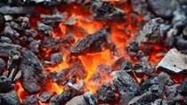 TT sắt thép thế giới ngày 24/12/2019: Giá than luyện cốc tại Trung Quốc giảm