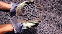 TT sắt thép thế giới ngày 03/01/2020: Giá quặng sắt tăng