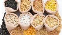 Nhập khẩu thức ăn chăn nuôi và nguyên liệu Việt Nam 5 tháng năm 2020 giảm mạnh 12,02%