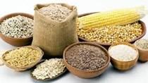 Nhập khẩu thức ăn chăn nuôi và nguyên liệu Việt Nam 7 tháng năm 2020 giảm nhẹ