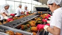 Đẩy mạnh xuất khẩu nông sản qua đường hàng không