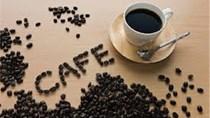 Thị trường cà phê 2 ngày 14, 15/4/2015