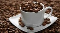 Thị trường cà phê ngày 04/6: không thay đổi so với phiên trước