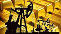 Hàng hóa TG tuần tới 25/10: Dầu và vàng đều giảm