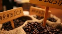 """Cà phê tiếp tục là """"ngôi sao"""" trong năm 2015?"""