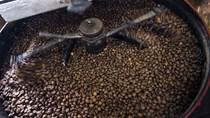Tích trữ cà phê ở Việt Nam gây thiếu hụt robusta toàn cầu