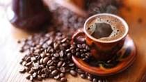 ICO dự đoán thâm hụt cà phê toàn cầu niên vụ 2014/15