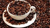 Cà phê lao dốc mạnh nhất kể từ năm 2010 do mưa ở Brazil