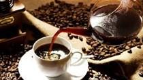 Giá cà phê arabica lên đỉnh hai năm sau khi mưa ít ở Brazil