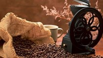 TT cà phê châu Á: Cà phê Indonesia rẻ ảnh hưởng tới doanh số cà phê Việt Nam
