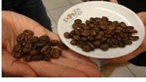 Cà phê châu Á: mức cộng cà phê Sumatran tăng, thị trường Việt Nam vắng vẻ