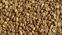 Xuất khẩu cà phê toàn cầu trong tháng 6 giảm do Việt Nam giữ lại