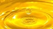 Indonesia áp đặt thuế xuất khẩu đối với dầu cọ thô vào cuối tháng 5