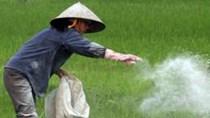 Nhập khẩu thuốc trừ sâu và nguyên liệu từ Trung Quốc chiếm gần 50%