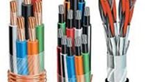 Thị trường xuất khẩu dây điện và cáp điện 10 tháng đầu năm 2013