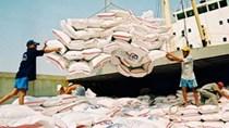 Thị trường xuất khẩu gạo của Việt Nam 11 tháng đầu năm 2011
