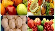 Xuất khẩu rau quả 9 tháng đầu năm tăng mạnh
