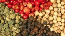 Thị trường xuất khẩu hạt tiêu 8 tháng đầu năm 2014