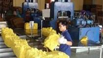 Thị trường xuất khẩu cao su 9 tháng đầu năm 2014