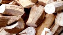 Thị trường xuất khẩu sắn và sản phẩm sắn 5 tháng đầu năm 2010