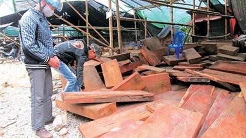 Kinh doanh gỗ sẽ ngày càng khó