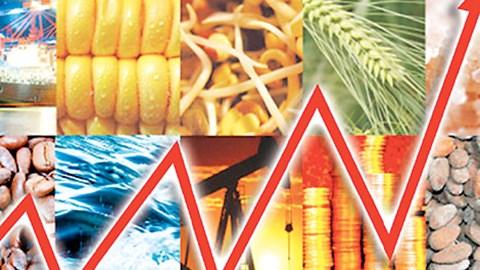 TT hàng hóa quốc tế tuần tới 18/9/2020: Giá hầu hết tăng, nhất là dầu mỏ và ngũ cốc