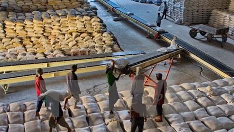 TT lúa gạo châu Á: Bangladesh có thể hủy hợp đồng NK gạo Thái vì giá cao