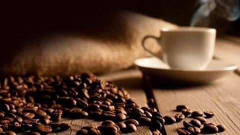 Giá cà phê trong nước ngày 21/11/2017