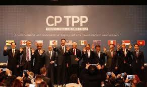Toàn văn hiệp định CPTPP