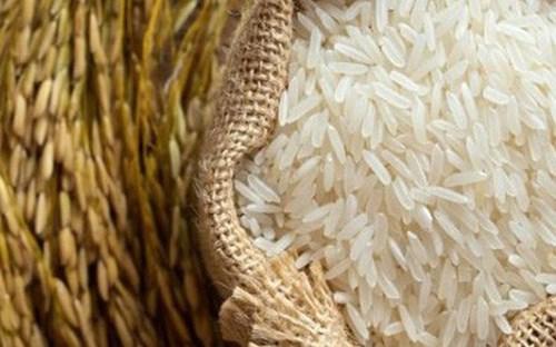 TT lúa gạo Châu Á: Giá gạo Ấn Độ giảm, Thái Lan và Việt Nam vững