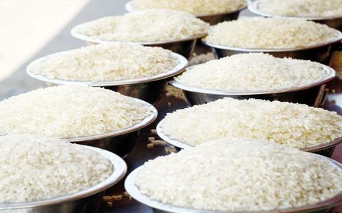 TT lúa gạo Châu Á tuần tới 1/10: Giá giảm