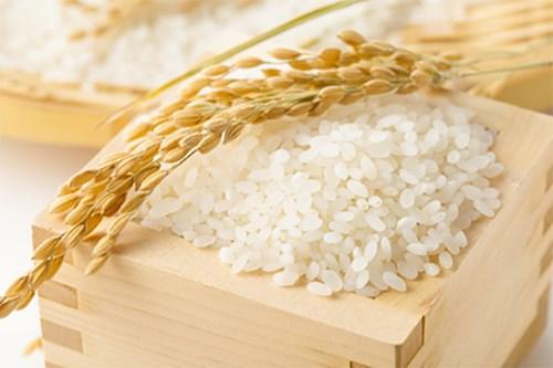 Philippines - Thị trường nhiều tiềm năng cho xuất khẩu hàng hóa của Việt Nam