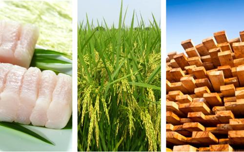 Nhiều ngành hàng xuất khẩu chủ lực của Việt Nam bắt đầu hưởng lợi từ EVFTA - kết quả xổ số đắc nông