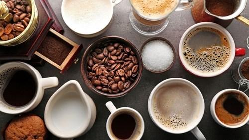 TT cà phê ngày 24/7: Giá dao động quanh mức 32.800 – 33.900 đồng/kg