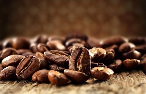 TT cà phê ngày 26/9: Giá sụt giảm nhẹ 200 đồng/kg