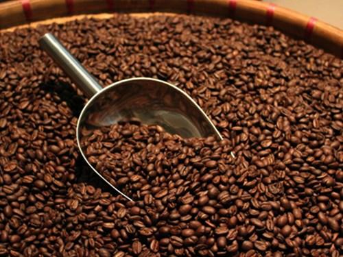 TT cà phê ngày 29/01: Giá trong nước và thế giới đồng loạt sụt giảm
