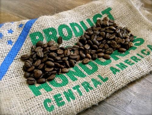 TT cà phê ngày 16/11: Giá mất mốc 34.000 đồng/kg sau phiên sụt giảm cuối tuần