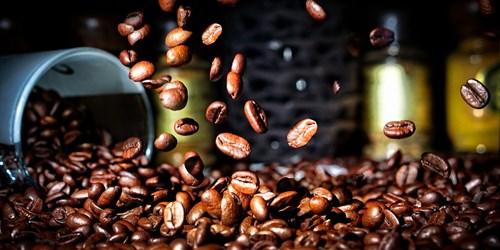 Giá cà phê hôm nay 19/6: Đảo chiều tăng cả trong nước và thế giới
