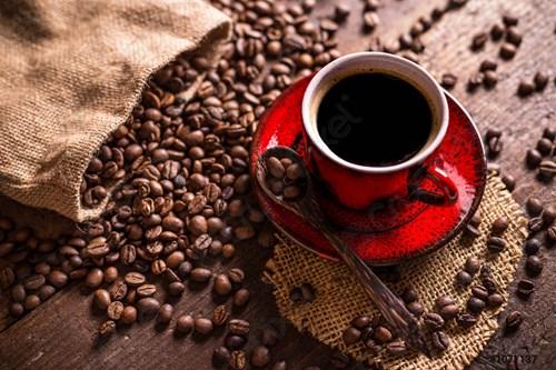 Giá cà phê tuần 24 (14/6 – 19/6): Tăng trở lại cả trong nước và thế giới