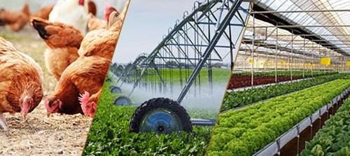 Ngành nông nghiệp được  hưởng lợi lớn nhất từ Hiệp định EVFTA