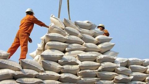 Việt Nam trúng thầu cung cấp 30 nghìn tấn gạo trắng cho Philippines