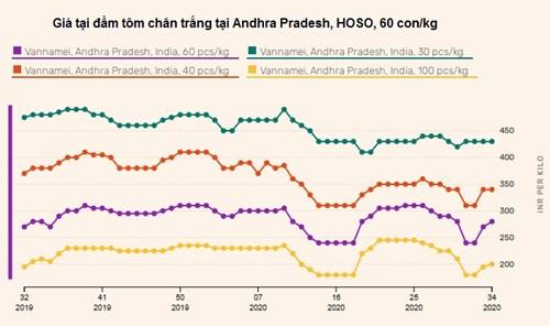 Ấn Độ đa dạng hóa thị trường xuất khẩu tôm
